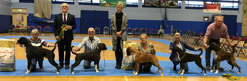 LHCBC October 2017 Champ Show